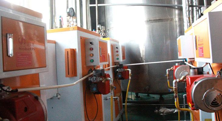 造纸专用燃气蒸汽发生器